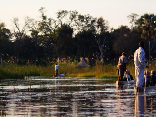Best of Botswana